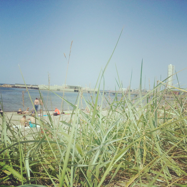 Sommar, sol och träning