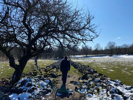 Vandring över fält där snön töar bort