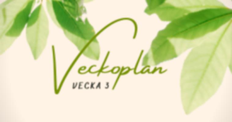 Veckoplanering – vecka 3